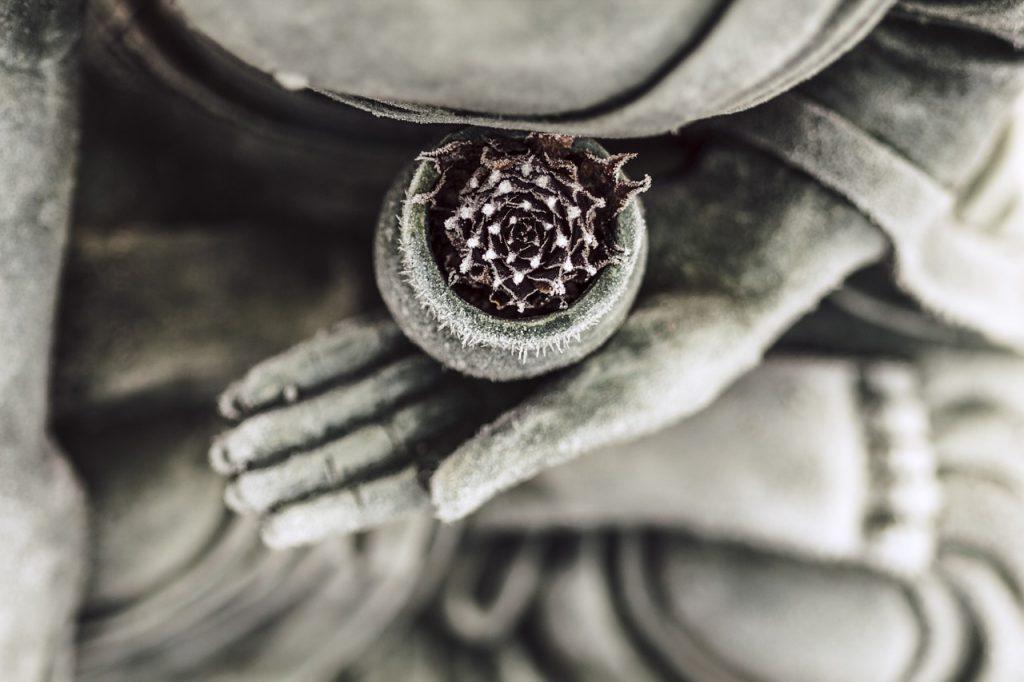 статуя с  кактус